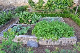 Can a veggie garden add value to your home?